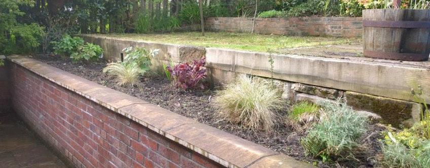 garden-tidy-up